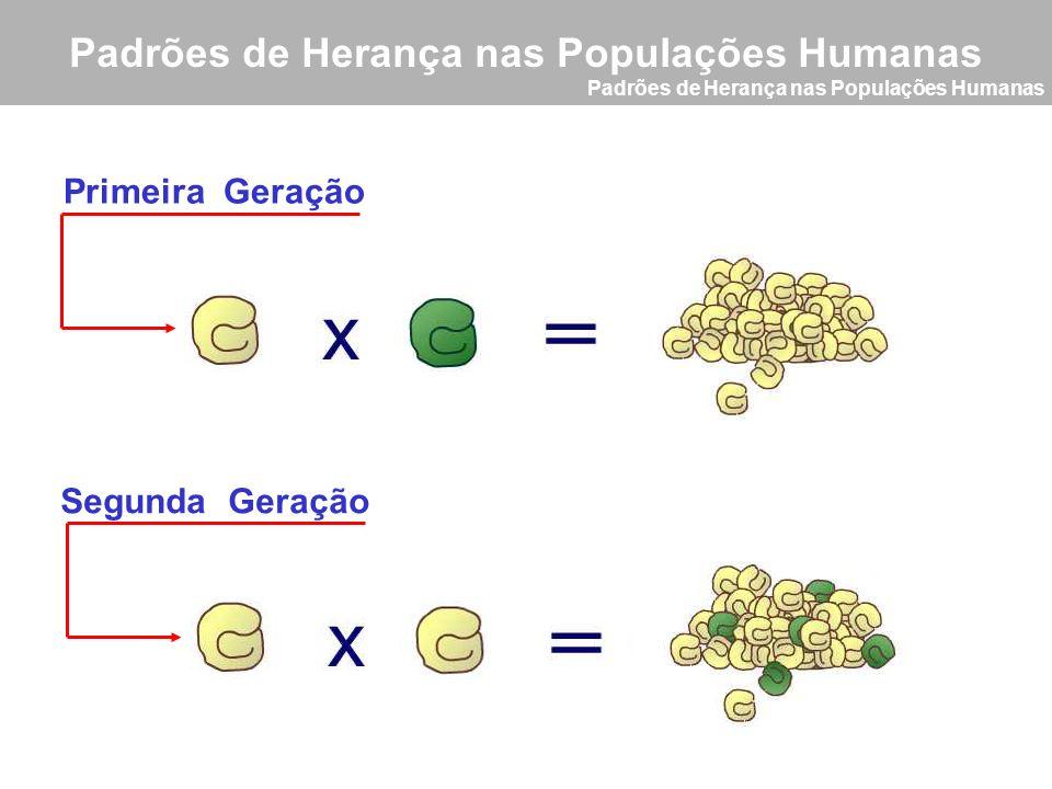 Primeira Geração Segunda Geração Padrões de Herança nas Populações Humanas