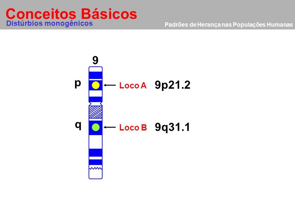 Conceitos Básicos Distúrbios monogênicos 9 p q Loco A 9p21.2 Loco B 9q31.1