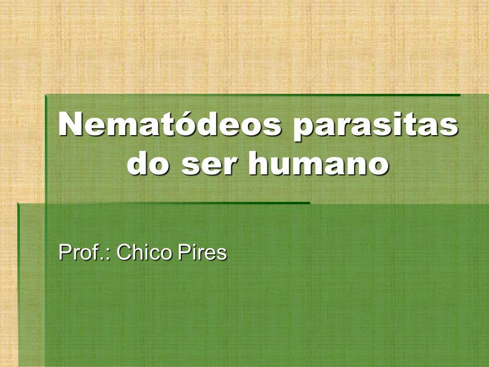 Nematódeos parasitas do ser humano Prof.: Chico Pires