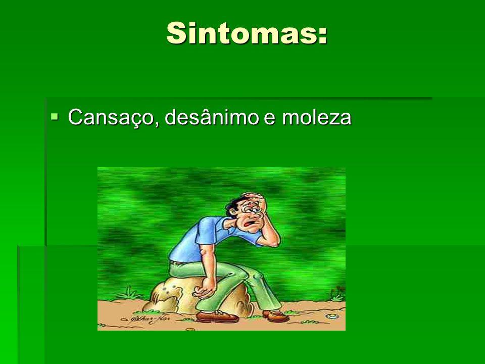 Sintomas: Cansaço, desânimo e moleza Cansaço, desânimo e moleza