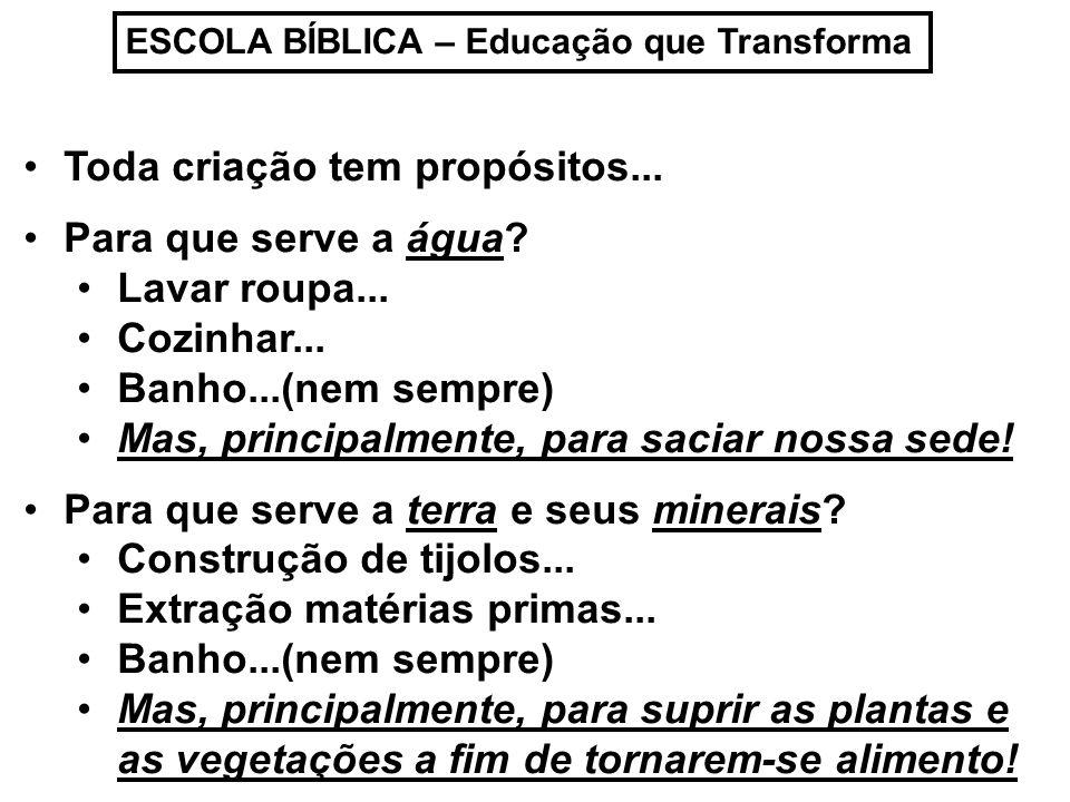 ESCOLA BÍBLICA – Educação que Transforma Para que serve a árvore.