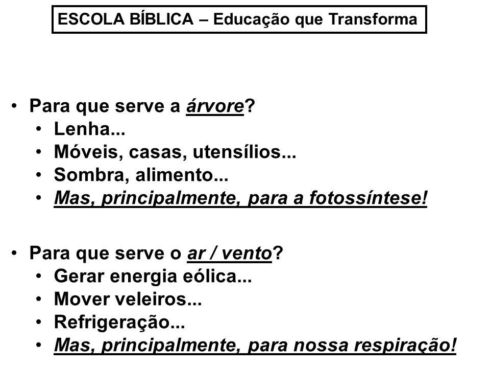 ESCOLA BÍBLICA – Educação que Transforma TUDO, criado por Deus, tem um propósito de existência!.