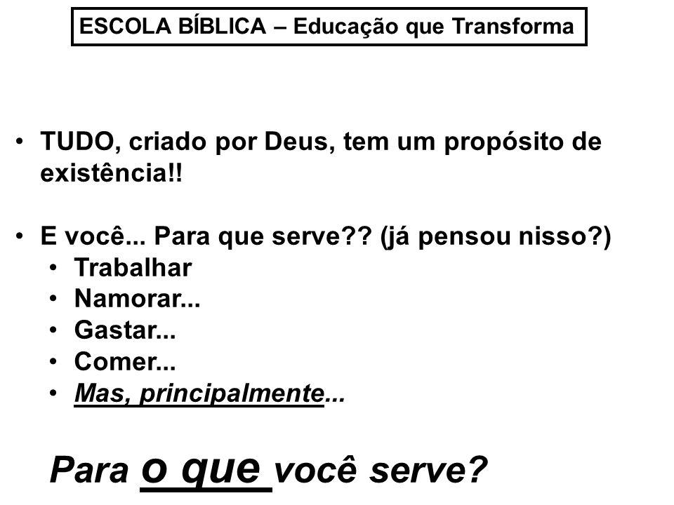 ESCOLA BÍBLICA – Educação que Transforma TUDO, criado por Deus, tem um propósito de existência!! E você... Para que serve?? (já pensou nisso?) Trabalh