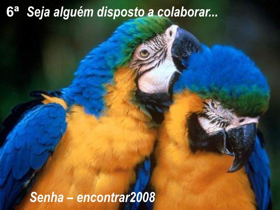 Seja alguém disposto a colaborar... 6ª Senha – encontrar2008