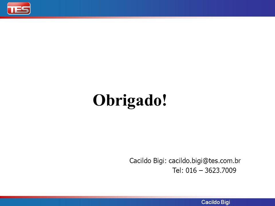 Cacildo Bigi Obrigado! Cacildo Bigi: cacildo.bigi@tes.com.br Tel: 016 – 3623.7009