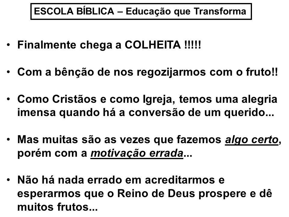 ESCOLA BÍBLICA – Educação que Transforma Finalmente chega a COLHEITA !!!!.