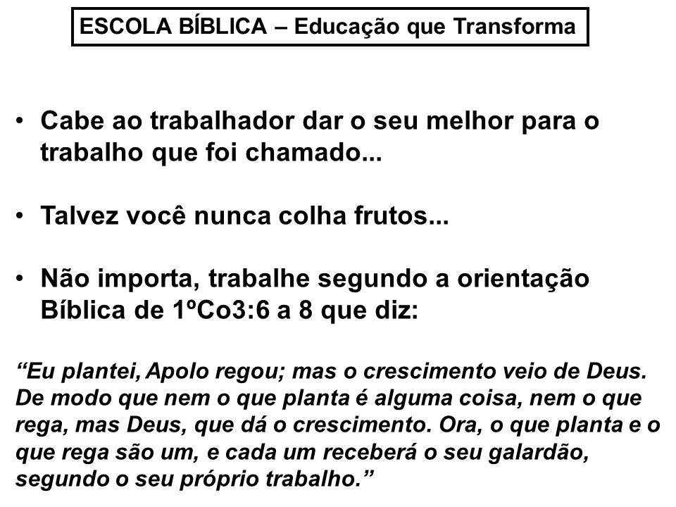 ESCOLA BÍBLICA – Educação que Transforma Cabe ao trabalhador dar o seu melhor para o trabalho que foi chamado...