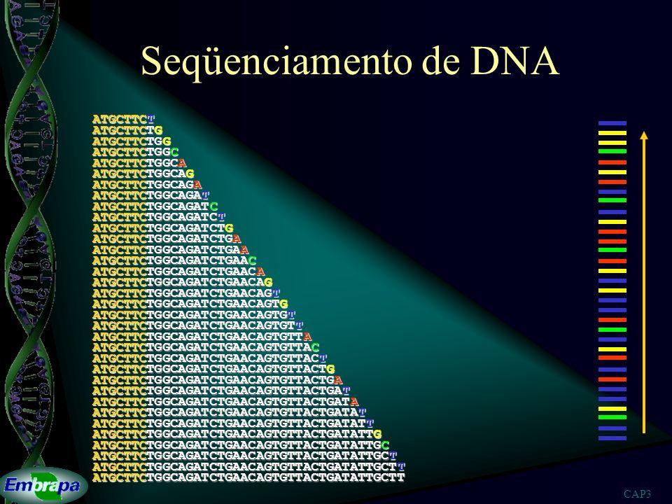 CAP3 Seqüenciamento de DNA ATGCTTCTGGCAGAT ATGCTTCTGGCAGATCTGAACAGTGTTACTGAT ATGCTTCTGGCAGATCTGAACAGTGT ATGCTTCTGGCAGATCTGAACAGTGTTACTGATATTGCTT ATGCT