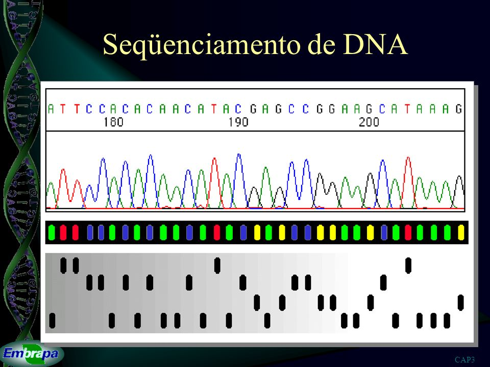 Seqüenciamento de DNA