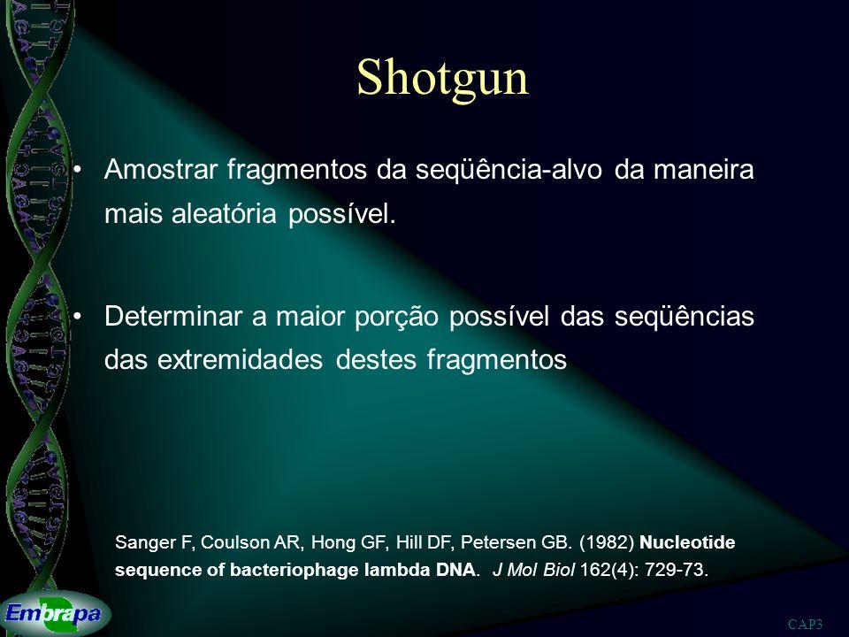 CAP3 Shotgun Amostrar fragmentos da seqüência-alvo da maneira mais aleatória possível. Determinar a maior porção possível das seqüências das extremida