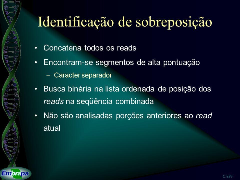 CAP3 Identificação de sobreposição Concatena todos os reads Encontram-se segmentos de alta pontuação –Caracter separador Busca binária na lista ordena