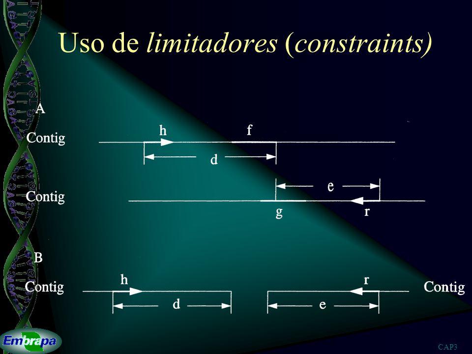 CAP3 Uso de limitadores (constraints)