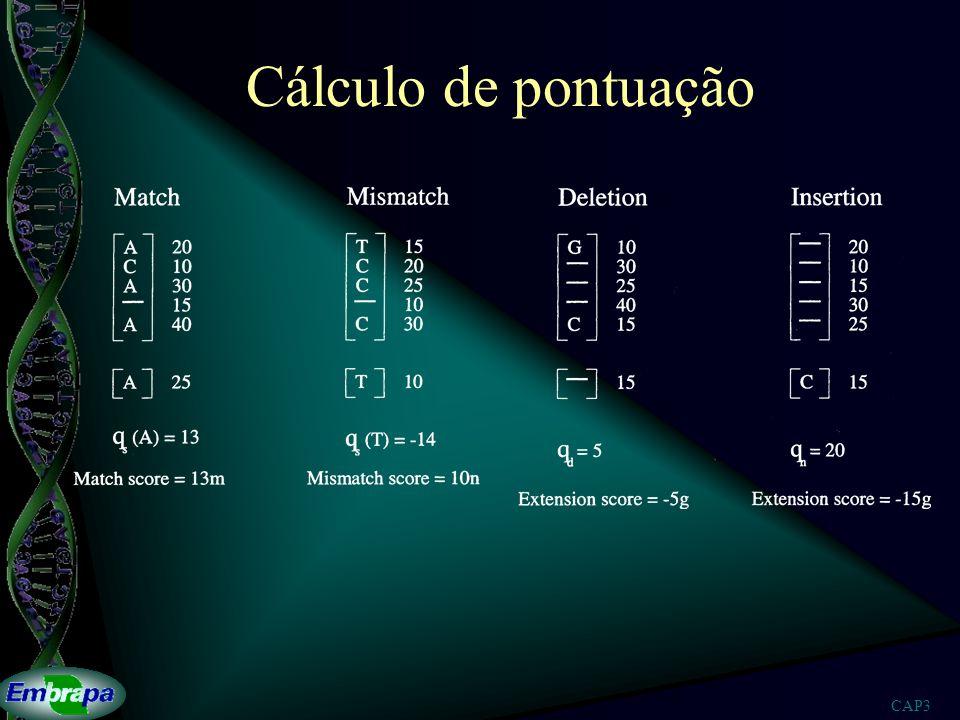 CAP3 Cálculo de pontuação