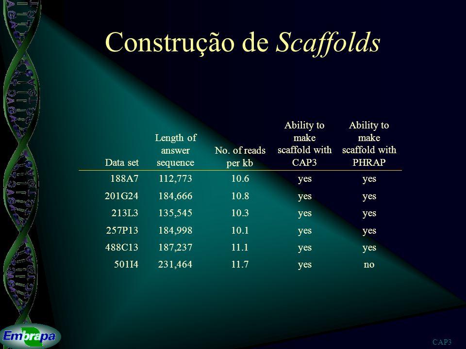 CAP3 Construção de Scaffolds Data set Length of answer sequence No. of reads per kb Ability to make scaffold with CAP3 Ability to make scaffold with P