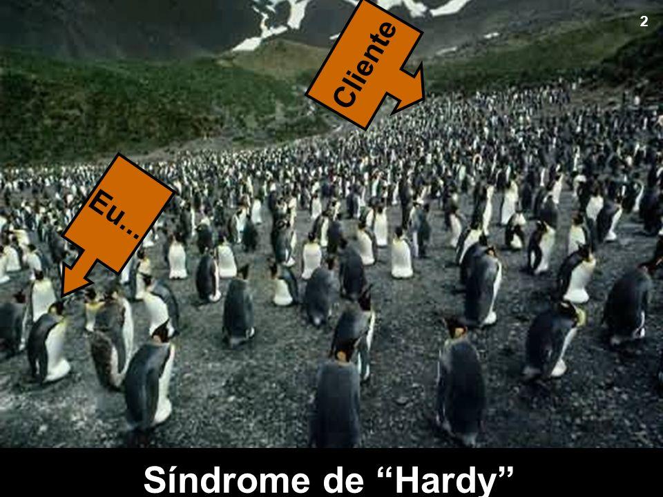 Na verdade, todos querem ser esse Herói, certo? Todos indo atrás de algum Cliente ! Síndrome de Hardy Cliente Eu... 2