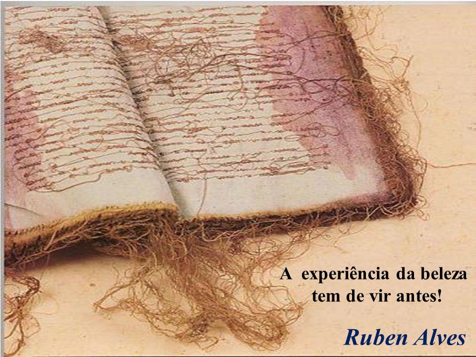 A experiência da beleza tem de vir antes! Ruben Alves