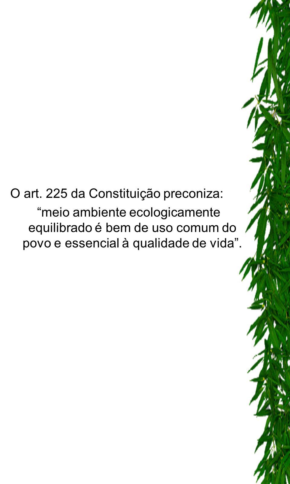 O art. 225 da Constituição preconiza: meio ambiente ecologicamente equilibrado é bem de uso comum do povo e essencial à qualidade de vida.