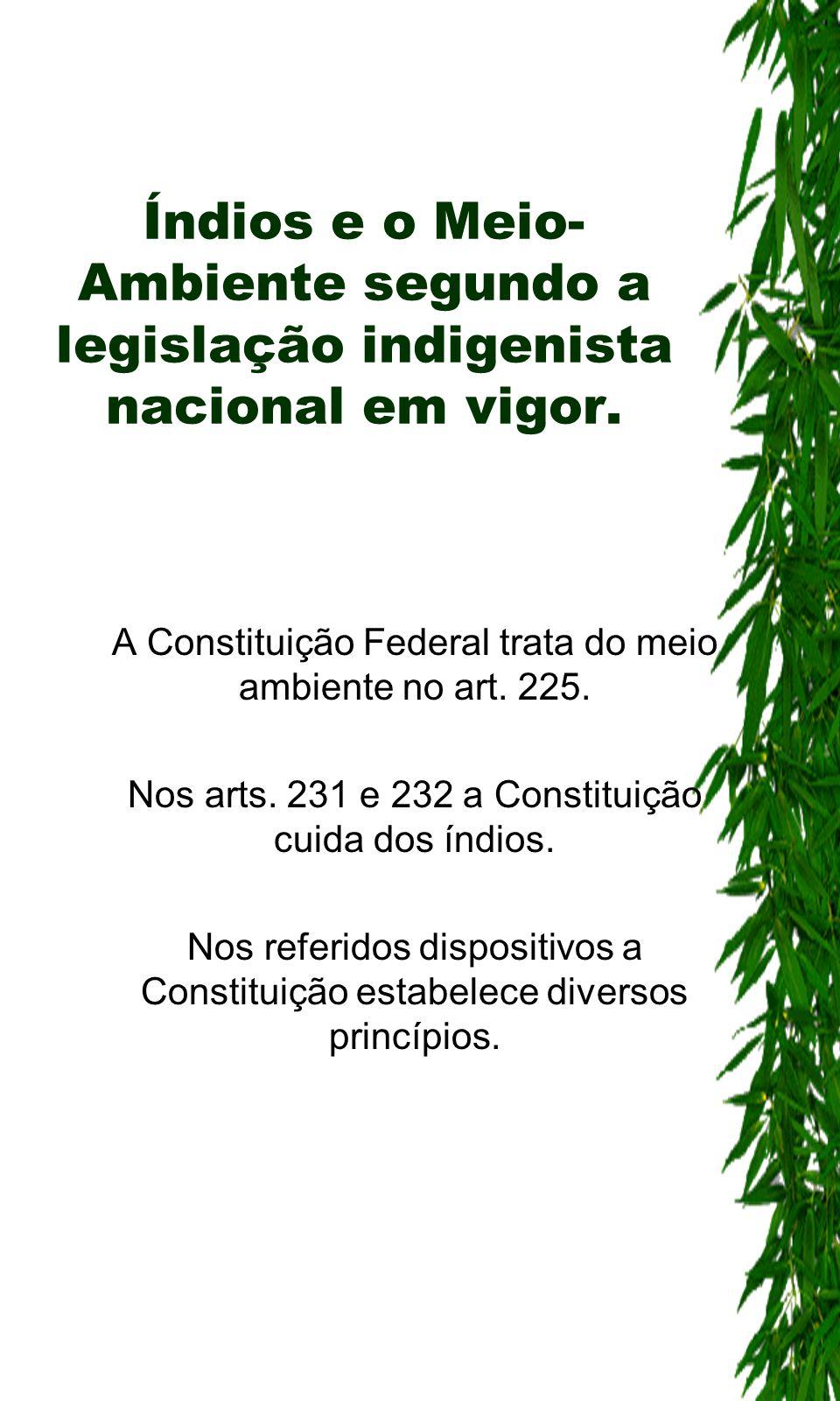 Índios e o Meio- Ambiente segundo a legislação indigenista nacional em vigor. A Constituição Federal trata do meio ambiente no art. 225. Nos arts. 231
