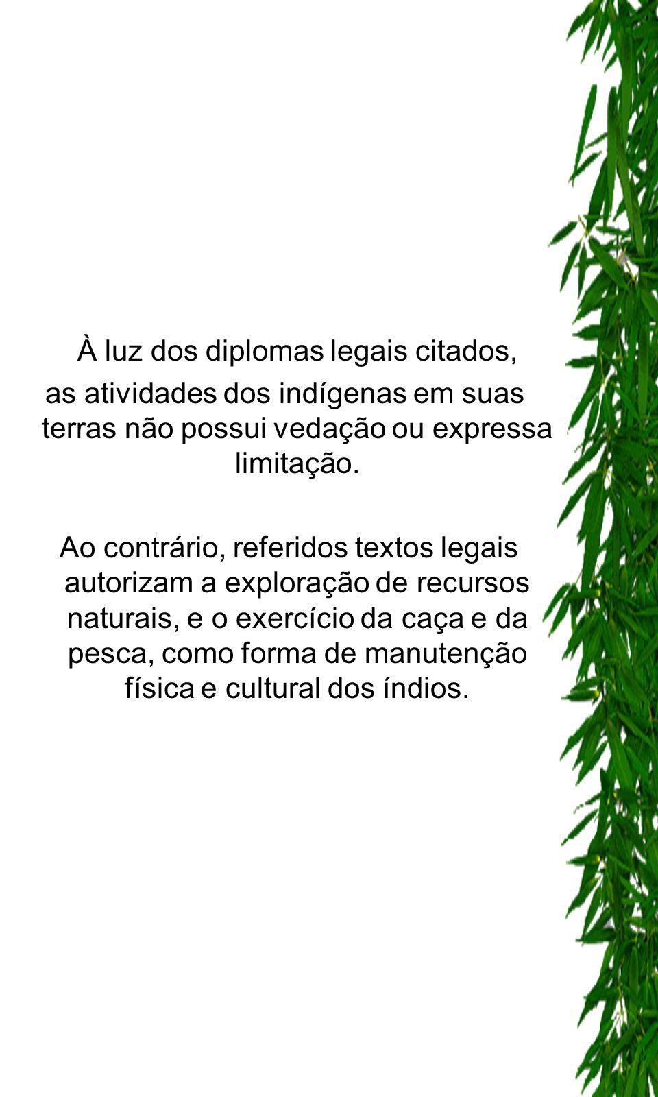 À luz dos diplomas legais citados, as atividades dos indígenas em suas terras não possui vedação ou expressa limitação. Ao contrário, referidos textos
