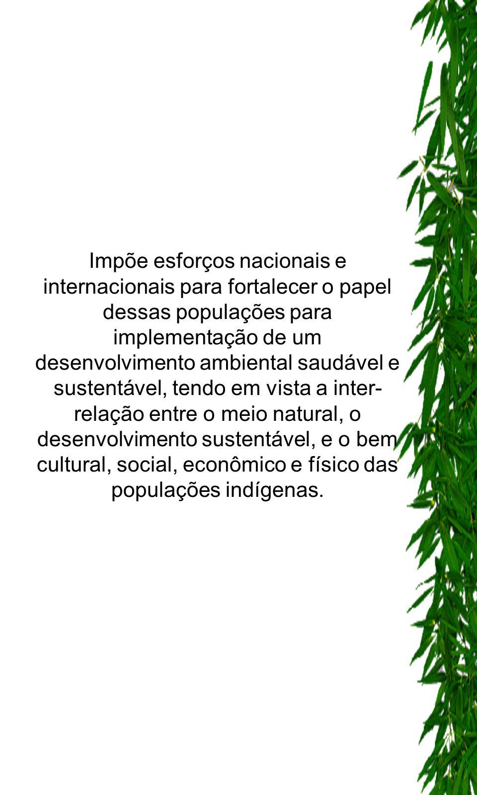 Impõe esforços nacionais e internacionais para fortalecer o papel dessas populações para implementação de um desenvolvimento ambiental saudável e sust