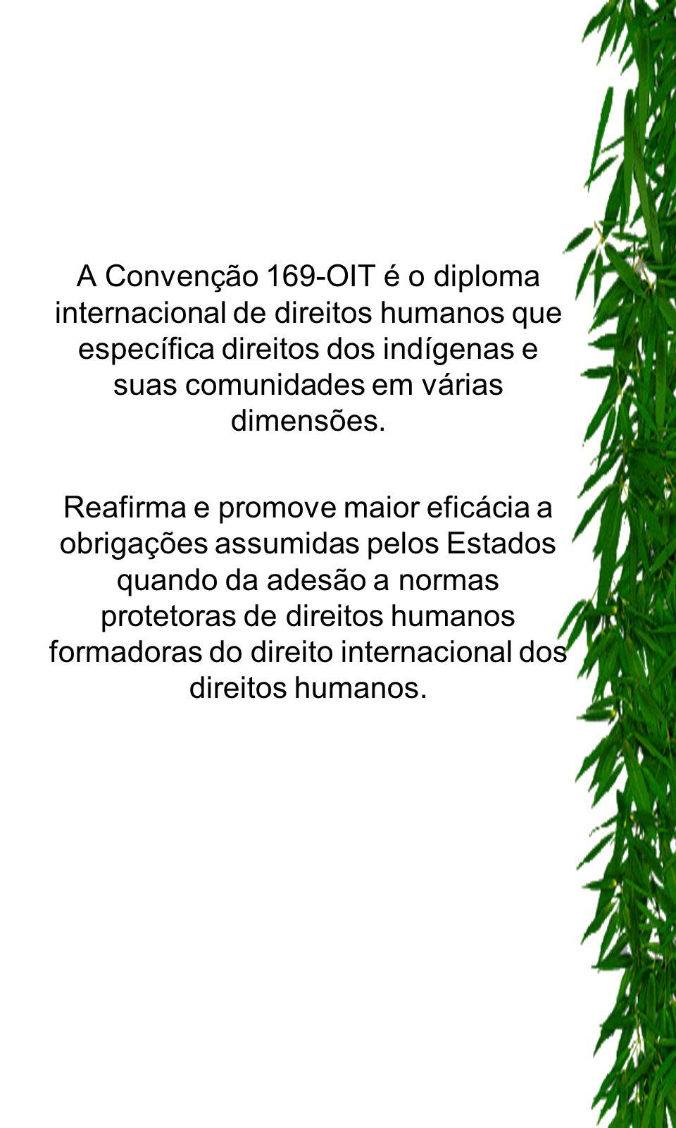 A Convenção 169-OIT é o diploma internacional de direitos humanos que específica direitos dos indígenas e suas comunidades em várias dimensões. Reafir