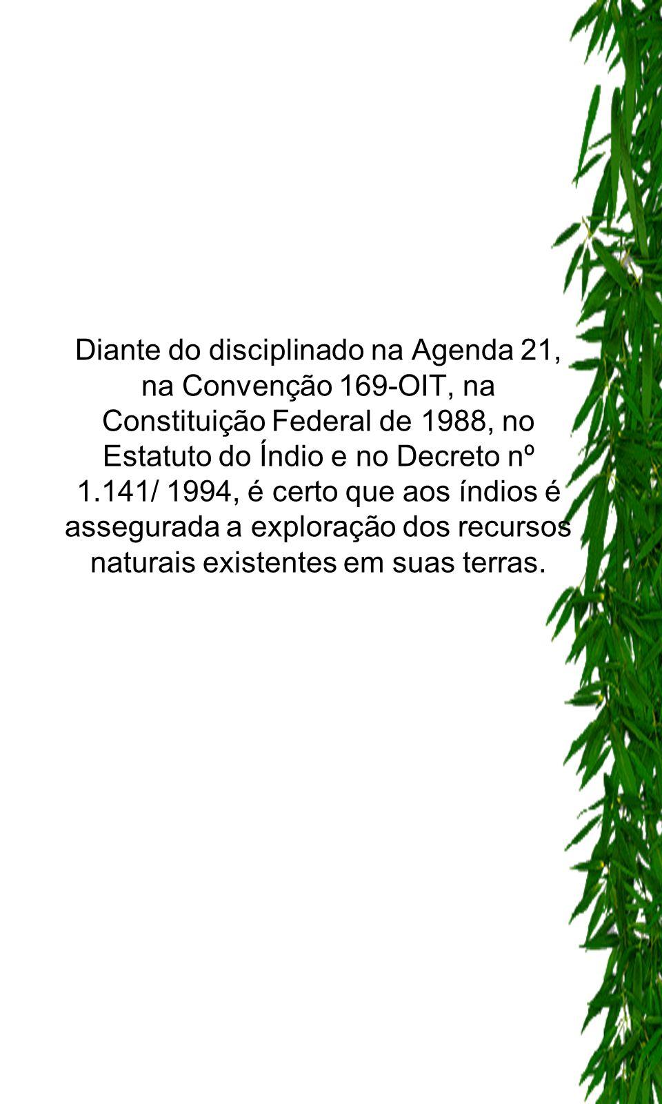 Diante do disciplinado na Agenda 21, na Convenção 169-OIT, na Constituição Federal de 1988, no Estatuto do Índio e no Decreto nº 1.141/ 1994, é certo