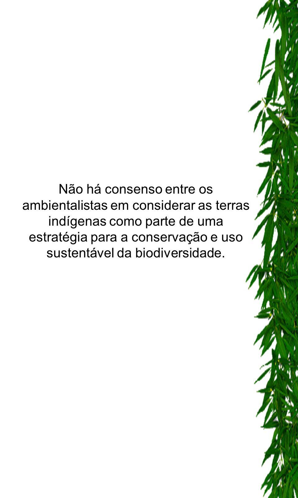 Não há consenso entre os ambientalistas em considerar as terras indígenas como parte de uma estratégia para a conservação e uso sustentável da biodive