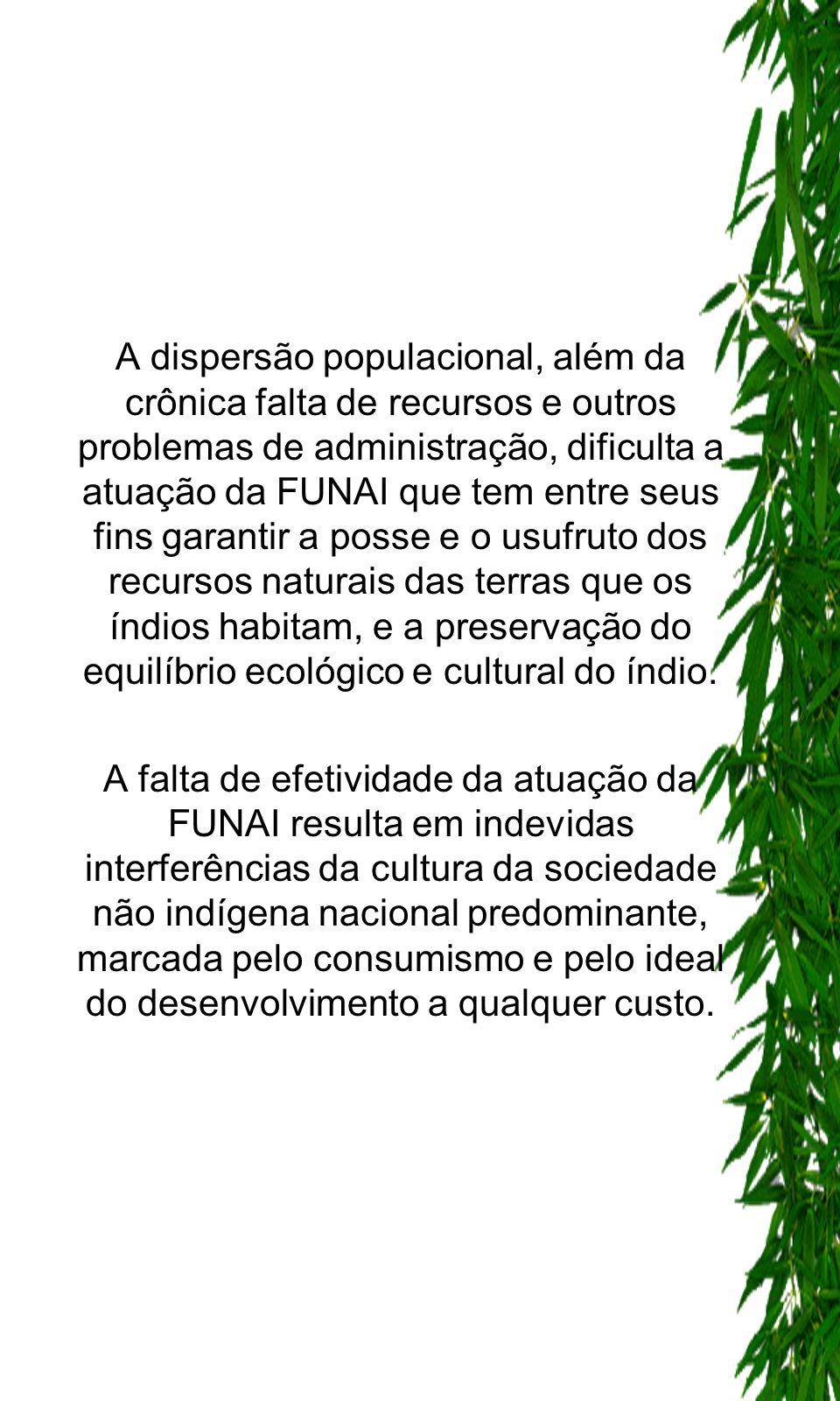 A dispersão populacional, além da crônica falta de recursos e outros problemas de administração, dificulta a atuação da FUNAI que tem entre seus fins