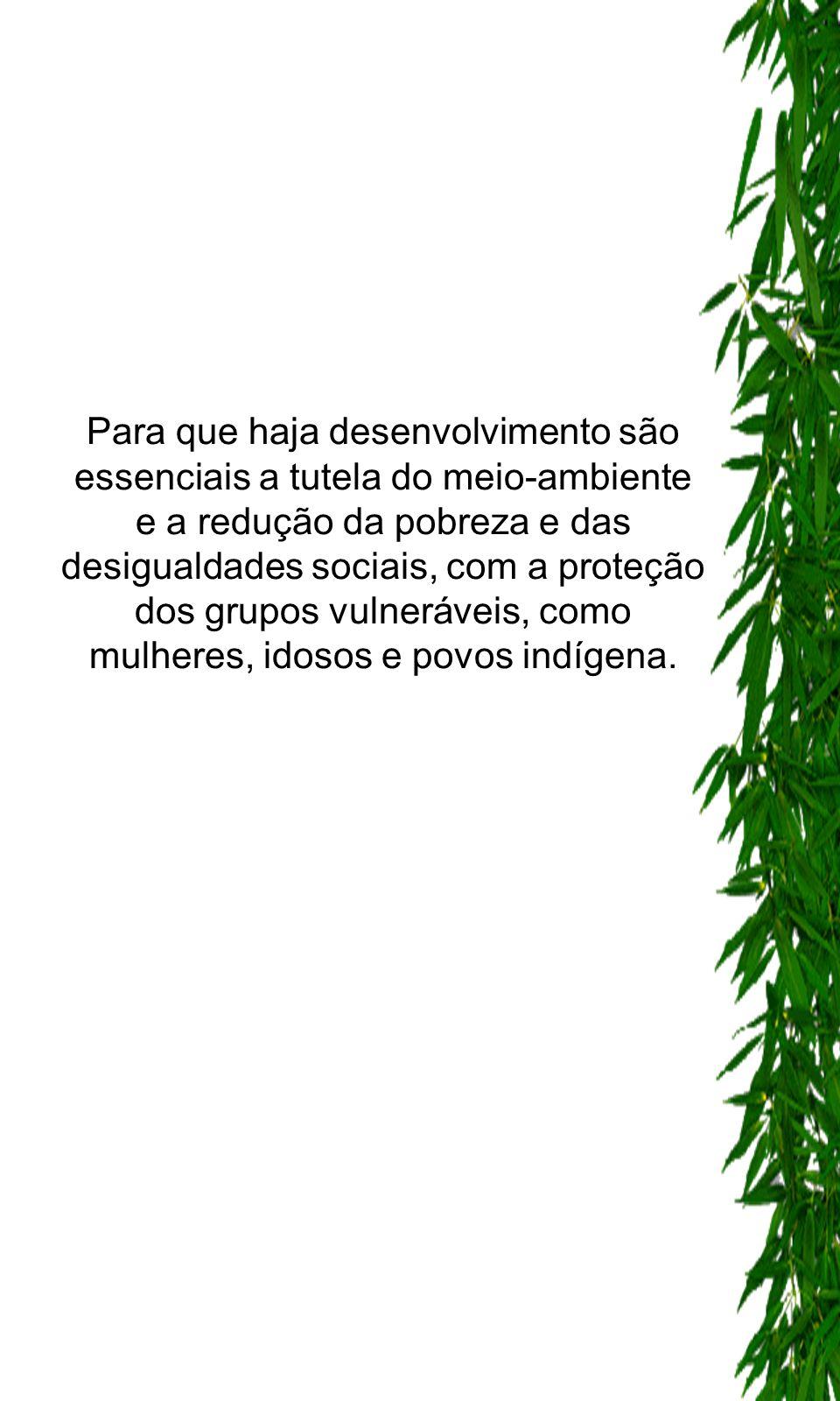 Para que haja desenvolvimento são essenciais a tutela do meio-ambiente e a redução da pobreza e das desigualdades sociais, com a proteção dos grupos v