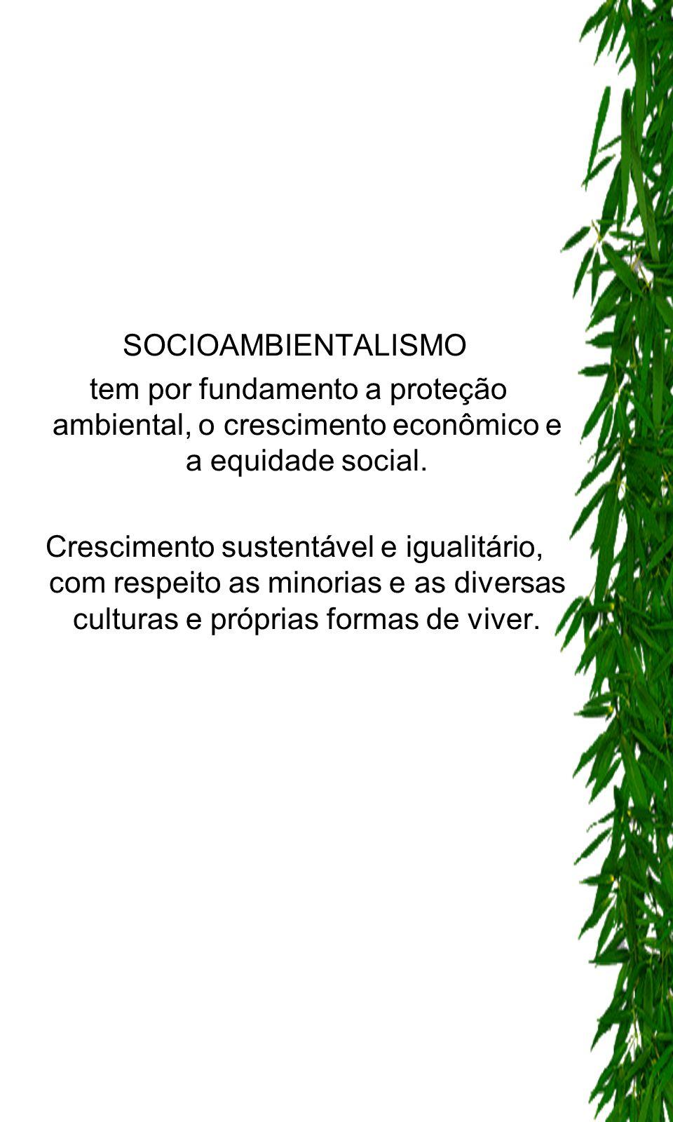 SOCIOAMBIENTALISMO tem por fundamento a proteção ambiental, o crescimento econômico e a equidade social. Crescimento sustentável e igualitário, com re