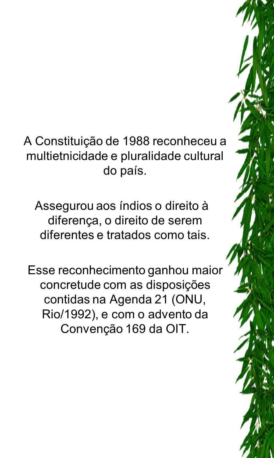 A Constituição de 1988 reconheceu a multietnicidade e pluralidade cultural do país. Assegurou aos índios o direito à diferença, o direito de serem dif