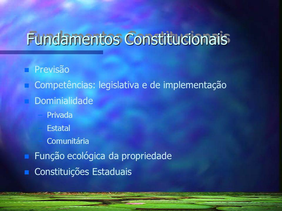 Fundamentos Constitucionais n n Previsão n n Competências: legislativa e de implementação n n Dominialidade – –Privada – –Estatal – –Comunitária n n F