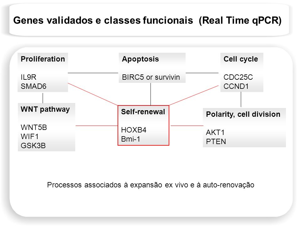 Genes validados e classes funcionais (Real Time qPCR) Proliferation IL9R SMAD6 Apoptosis BIRC5 or survivin Cell cycle CDC25C CCND1 WNT pathway WNT5B W