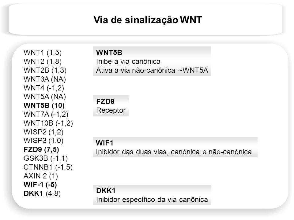 Via de sinalização WNT WNT1 (1,5) WNT2 (1,8) WNT2B (1,3) WNT3A (NA) WNT4 (-1,2) WNT5A (NA) WNT5B (10) WNT7A (-1,2) WNT10B (-1,2) WISP2 (1,2) WISP3 (1,