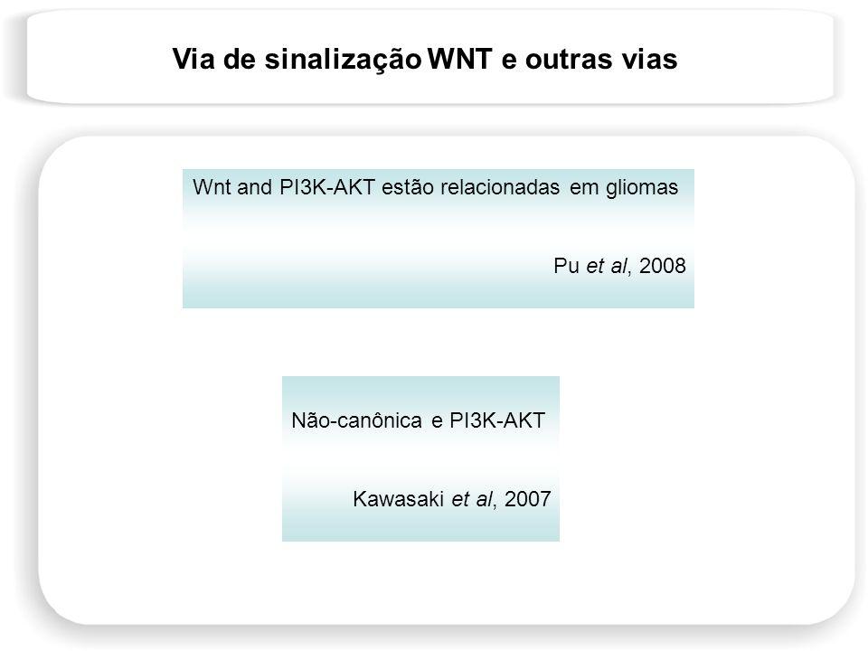 Não-canônica e PI3K-AKT Kawasaki et al, 2007 Wnt and PI3K-AKT estão relacionadas em gliomas Pu et al, 2008 Via de sinalização WNT e outras vias