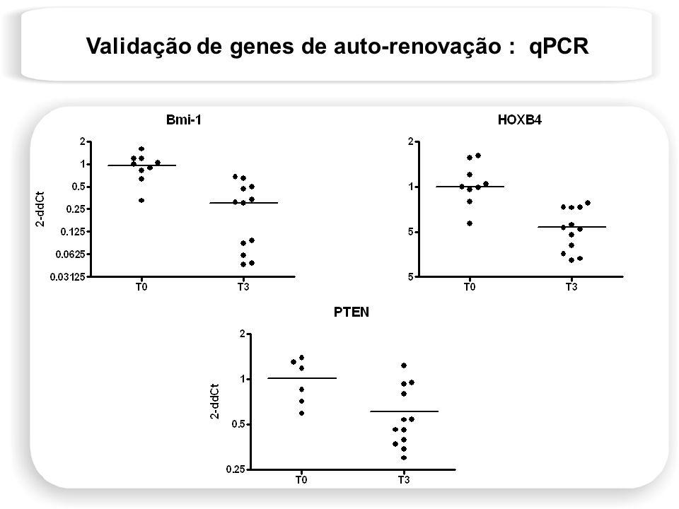 Validação de genes de auto-renovação : qPCR