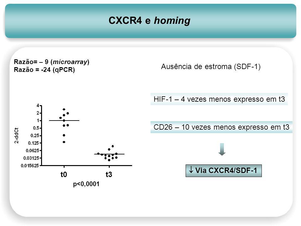 CXCR4 e homing p<0,0001 t0t3 Razão= – 9 (microarray) Razão = -24 (qPCR) Ausência de estroma (SDF-1) HIF-1 – 4 vezes menos expresso em t3 CD26 – 10 vez