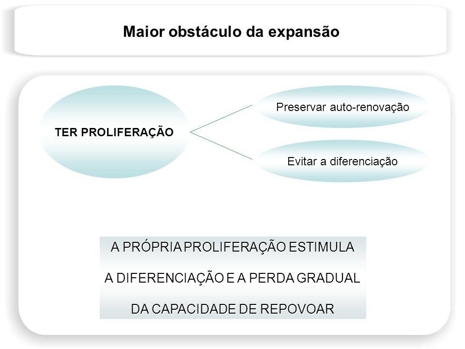 Maior obstáculo da expansão A PRÓPRIA PROLIFERAÇÃO ESTIMULA A DIFERENCIAÇÃO E A PERDA GRADUAL DA CAPACIDADE DE REPOVOAR TER PROLIFERAÇÃO Preservar aut