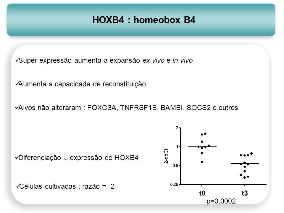 HOXB4 : homeobox B4 Super-expressão aumenta a expansão ex vivo e in vivo Aumenta a capacidade de reconstituição Alvos não alteraram : FOXO3A, TNFRSF1B
