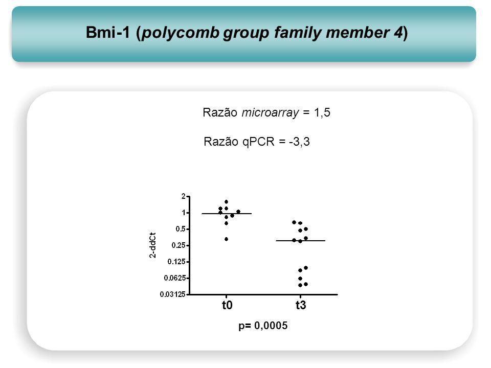 Bmi-1 (polycomb group family member 4) t0t3 p= 0,0005 Razão microarray = 1,5 Razão qPCR = -3,3