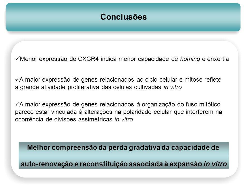 Conclusões Menor expressão de CXCR4 indica menor capacidade de homing e enxertia A maior expressão de genes relacionados ao ciclo celular e mitose ref
