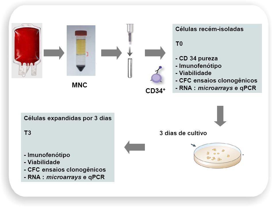 Células recém-isoladas T0 - CD 34 pureza - Imunofenótipo - Viabilidade - CFC ensaios clonogênicos - RNA : microarrays e qPCR CD34 + 3 dias de cultivo
