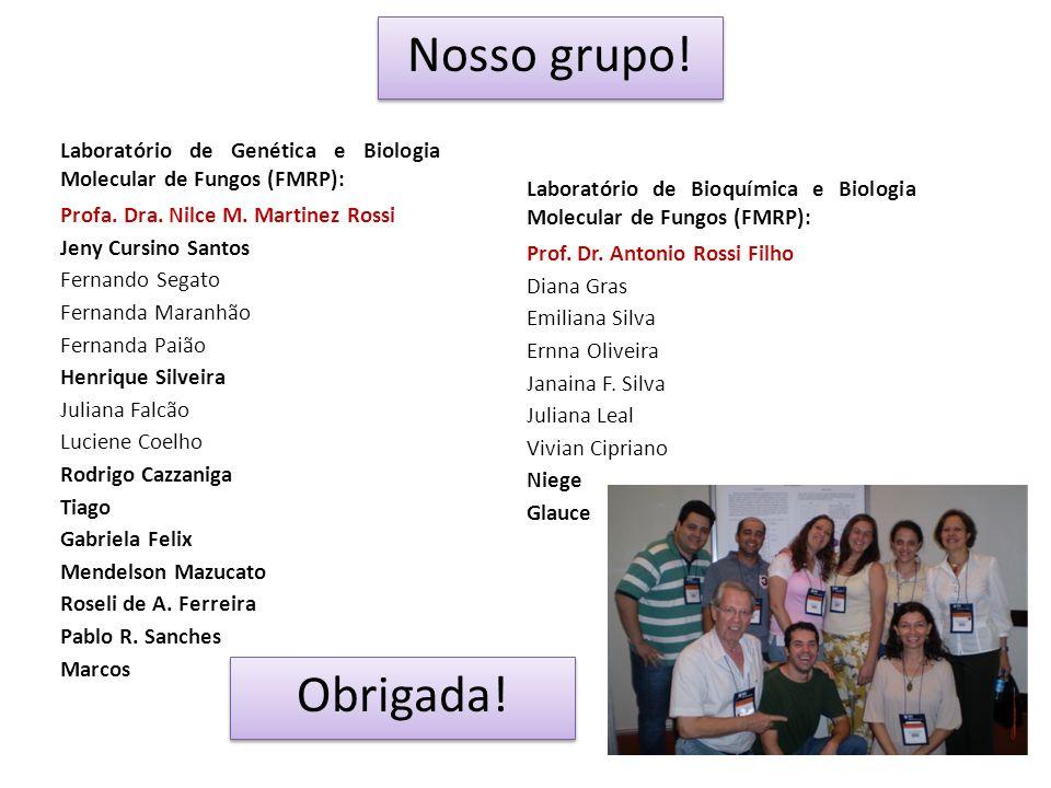 Laboratório de Genética e Biologia Molecular de Fungos (FMRP): Profa. Dra. Nilce M. Martinez Rossi Jeny Cursino Santos Fernando Segato Fernanda Maranh