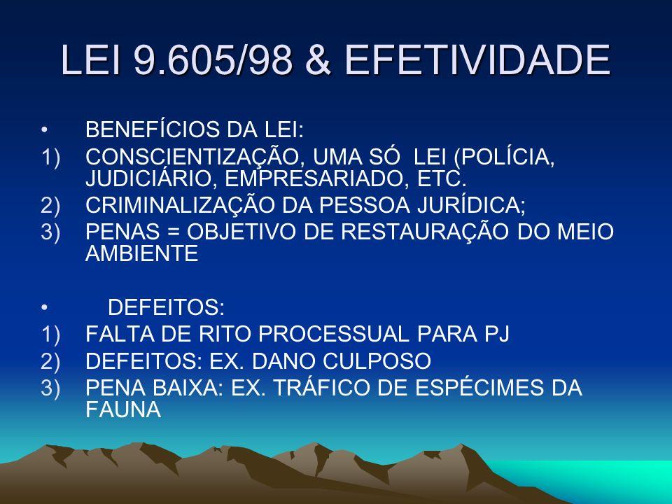 LEI 9.605/98 & EFETIVIDADE BENEFÍCIOS DA LEI: 1)CONSCIENTIZAÇÃO, UMA SÓ LEI (POLÍCIA, JUDICIÁRIO, EMPRESARIADO, ETC. 2)CRIMINALIZAÇÃO DA PESSOA JURÍDI