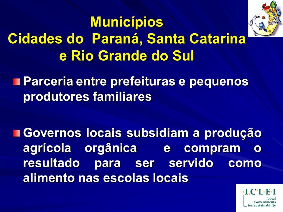 Municípios Cidades do Paraná, Santa Catarina e Rio Grande do Sul Parceria entre prefeituras e pequenos produtores familiares Governos locais subsidiam