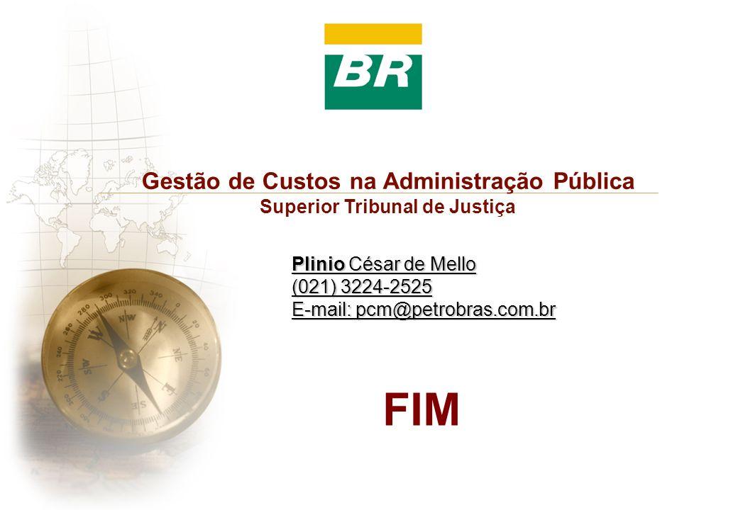 FIM Gestão de Custos na Administração Pública Superior Tribunal de Justiça Plinio César de Mello (021) 3224-2525 E-mail: pcm@petrobras.com.br