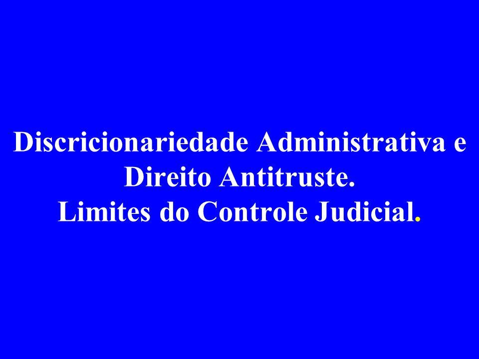 Trâmite do processo administrativo Representação protocolada em dezembro de 1998 Parecer da SDE em maio de 2001 Julgamento final pelo CADE em março de 2004 - duas sessões, com pedido de vista de um dos Conselheiros (voto divergente) Tempo total no SBDC- 4 anos e meio