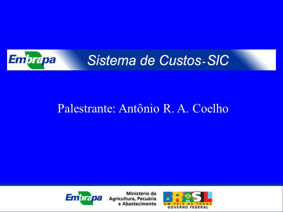 MANUTENÇÃO E CONSERVAÇÃO DE VEÍCULOS - 2005/2006/2007 (até JUL) Palestrante: Antônio R. A. Coelho