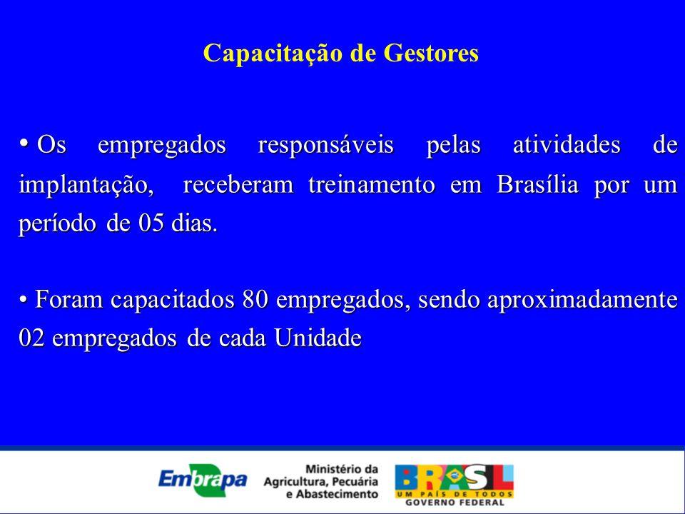 Capacitação de Gestores Os empregados responsáveis pelas atividades de implantação, receberam treinamento em Brasília por um período de 05 dias. Os em