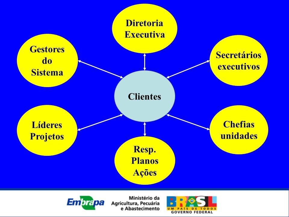 Clientes Secretários executivos Gestores do Sistema Líderes Projetos Resp. Planos Ações Diretoria Executiva Chefias unidades